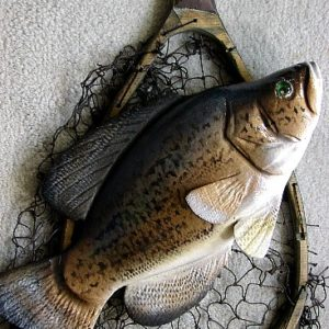 Fishing Cabin Lake Decor